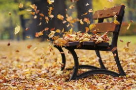 autumn-leaves-in-wind.jpg
